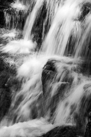 20180504-05 Blackwater Falls State Park 045