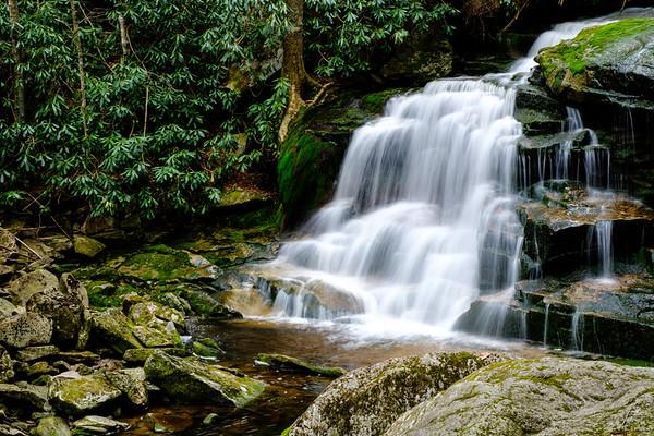 20180504-05 Blackwater Falls State Park 019