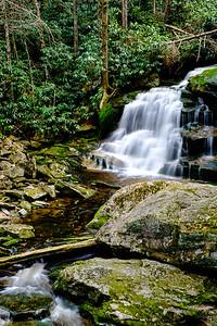 20180504-05 Blackwater Falls State Park 016