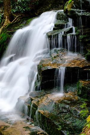 20180504-05 Blackwater Falls State Park 033