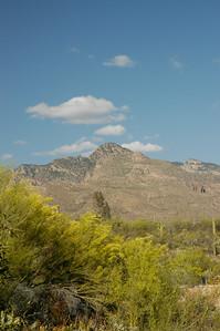20050428 Westward Look Tucson 008