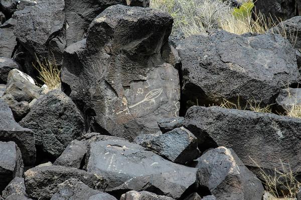 20051002 Albuquerque 482