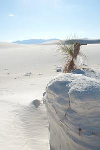 20081007 White Sands 047