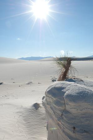 20081007 White Sands 049