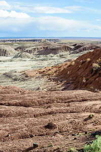 20090531 Arizona Petrified Forest 007