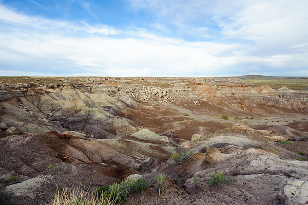 20090531 Arizona Petrified Forest 035