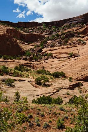 20090601 Canyon de Chelly 059