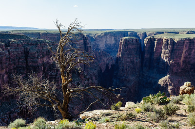 20090621-24 Grand Canyon 013