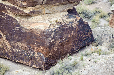 20090621 Petrified Forest020