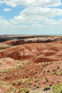 20090621 Petrified Forest001