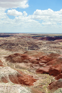 20090621 Petrified Forest012