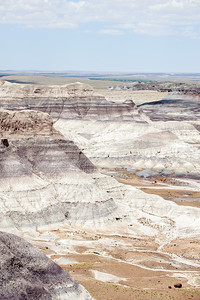 20090621 Petrified Forest026