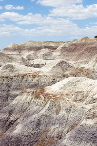 20090621 Petrified Forest029