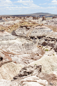 20090621 Petrified Forest025