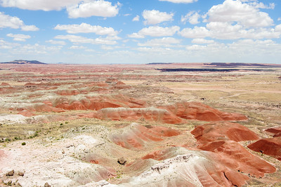 20090621 Petrified Forest010