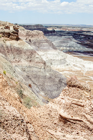 20090621 Petrified Forest028
