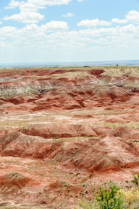 20090621 Petrified Forest006