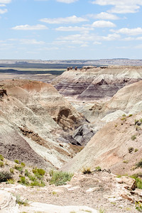 20090621 Petrified Forest027