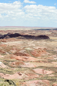 20090621 Petrified Forest007
