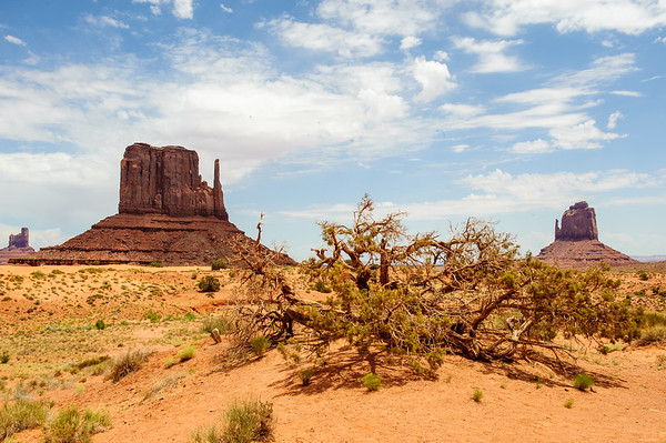 20090624 Monument Valley 005