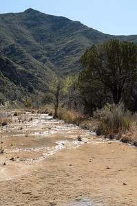 20100404 Guadalupe Mountains 007
