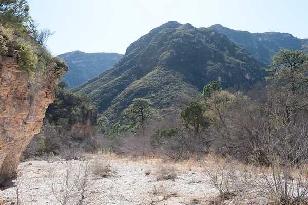 20100404 Guadalupe Mountains 020