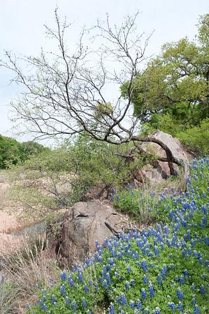 20100406 Enchanted Rock 062