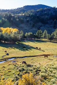 20111015 Taos 041