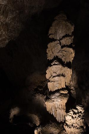 20161105 Carlsbad Caverns 055