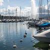 Lake Geneva and  Jet d'Eau