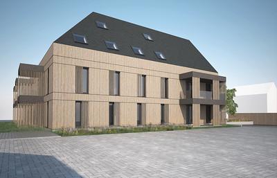 08 Sonne in Bleibach. Die Regelfensterelemente im gesamten Gebäude haben ein Format.