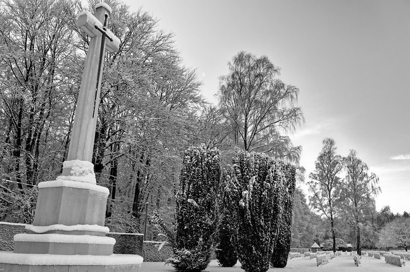 View of the rear part of the cemetery, facing north (b/w)