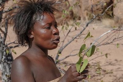 Unsere Führerin zeigte uns dann viele verschiedene Pflanzen und erklärte was man damit machen kann. Hier die Blätter des Mopane Baums. Mit den Zweigen kann man sich die Zähne putzen.