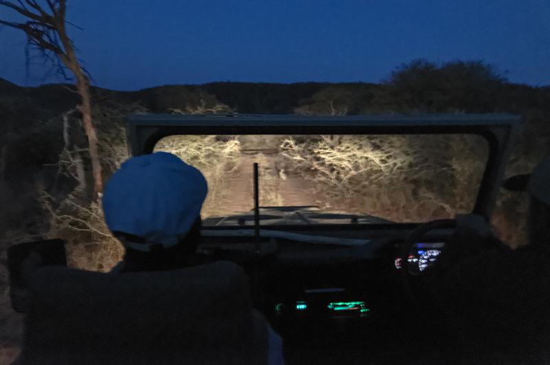Auf der Rückfahrt wurde es schnell dunkel und kalt. Das Kaninchen auf der Strasse hätten wir fast überfahren.