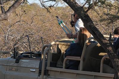 Dann wurde von einer anderen Gruppe am anderen Ende des Reservates ein Leopard geortet. Als wir endlich ankamen versuchte sich diese Gruppe mit dem Auto in den Busch vorzuarbeiten.