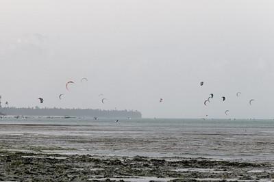 Unser Küstenabschnitt scheint ein Paradies für Kitesurfer zu sein.