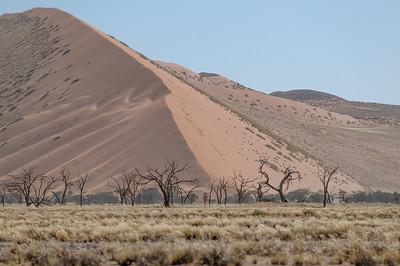 Heute haben wir uns die Riesendünen im Sossusvlei angeschaut.