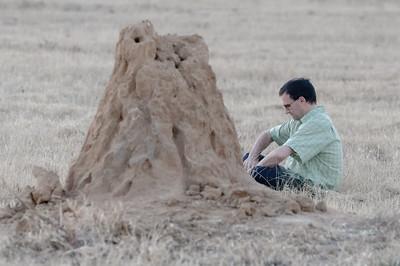 Sucht Wolfgang nach Termiten?