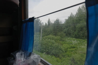 So sieht es aus, wenn man aus dem Fenster schaut. Endlose Birkenwälder und Sümpfe.