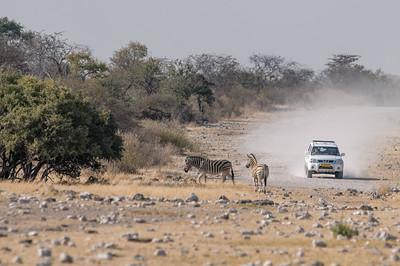 Für die Fahrt durch Namibia haben wir uns Autos geliehen.