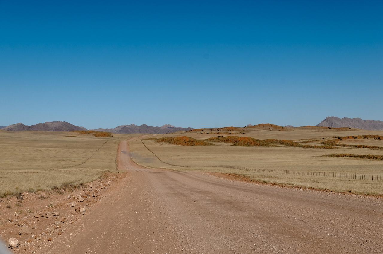 Wir sind etwa 4400km in knapp 3 Wochen gefahren. Oft auf Pisten wie dieser.