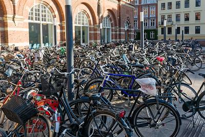 Hier gibt es soviele Räder, wie in Holland. Ähnlich wie in Holland, halten die Dänen auch nichts von Helmen.