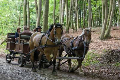 Man kann mit der Kutsche vom Bahnhof zum Schloss fahren. Aber wir schaffen den Kilometer noch zu Fuss.