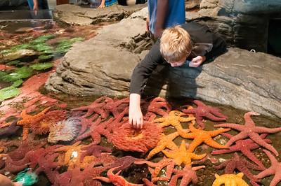 Der Streichelzoo des Aquariums.