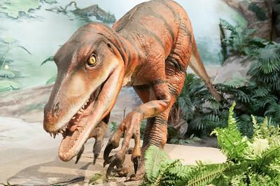 Und natürlich Dinosuarier.