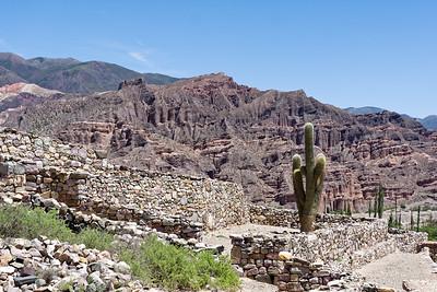 In Tilara haben wir eine alte Befestigungsanlage (Pucará) der Inka besichtigt. Wahrscheinlich existierte die Anlage aber schon, bevor die Inkas kamen. Es gibt im Humahuaca-Tal über 20 solche Anlagen, die von der einen zur nächsten Sichtkontakt haben.