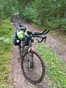 Auf dem Waldweg ging es durch dicken Schlamm. Teilweise musste ich schieben.