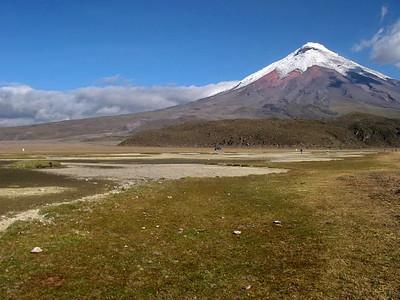 """Cotopaxi Der Cotopaxi ist mit 5.897 m der zweithöchste Berg Ecuadors und einer der höchsten aktiven Vulkane der Erde. Er gehört zur """"Allee der Vulkane"""". Als ecuadorianischer Berg ist der Chimborazo mit 6.310 m zwar höher, aber nicht mehr vulkanisch aktiv. Als weltweit höchster aktiver Vulkan gilt derzeit der 6.887 m hohe Ojos del Salado in Argentinien/Chile). Der Cotopaxi liegt in den östlichen Anden in Zentral-Ecuador in dem nach ihm benannten Nationalpark ca. 50 km südlich von Quito. Obwohl aktiv, ist er der am häufigsten bestiegene Berg des Landes und einer der meistbesuchten Gipfel Südamerikas. Durch seine regelmäßige, konische Form und die Eiskappe auf dem Gipfel entspricht der Cotopaxi dem Idealbild eines Stratovulkans. Der Krater hat am Gipfel einen Durchmesser von 800x550 m und ist ca. 350 m tief. Rauchausstoß ist oft zu beobachten. Seit 1738 ist der Cotopaxi etwa 50 Mal ausgebrochen. Davon waren die gewaltigsten Eruptionen die der Jahre 1744, 1768 und 1877. Die große Eruption 1877 schmolz den Gipfelgletscher ab, so dass die entstehende Schlammlawine das umliegende Land mehr als 100 km weit überflutete und die Stadt Latacunga komplett zerstörte. Der letzte größere Ausbruch war 1904, die letzte größere Aktivität 1975–76 bestand in einer Temperaturerhöhung, Rauchbildung und kleineren Erdbeben. Der erste Europäer, der versuchte den Berg zu besteigen, war Alexander von Humboldt im Jahre 1802. Er erreichte eine Höhe von ca 4.500 m. Bis zum Gipfel gelangte siebzig Jahre später der Geologe Wilhelm Reiß. Heutzutage werden regelmäßig Besteigungen mit Bergführern durch ecuadorianische Reisebüros angeboten. Auf 4.800 m Höhe befindet sich die Jose-Ribas-Schutzhütte, in der Touristen übernachten können und von der aus der Aufstieg beginnt. Der Cotopaxi liegt in der gleichnamigen ecuadorianischen Provinz Cotopaxi."""