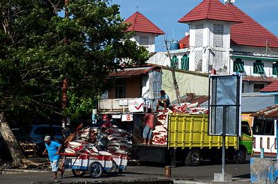 Ternate - Harbour