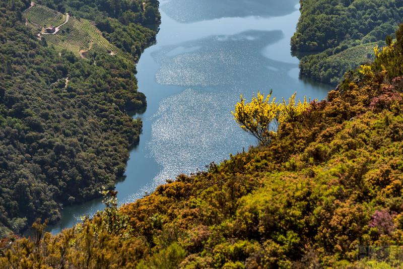 Ribeira Sacra am Rio Sil